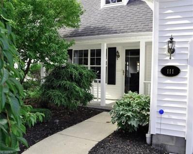 111 Lavender Ln, Madison, OH 44057 - MLS#: 4034333