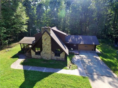 14831 Robinson Rd, Newton Falls, OH 44444 - MLS#: 4034442