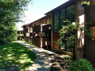 6885 Carriage Hill Dr UNIT 70, Brecksville, OH 44141 - MLS#: 4034542