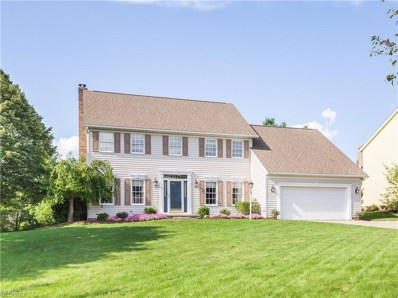 374 Laurel Ln, Wadsworth, OH 44281 - MLS#: 4034567