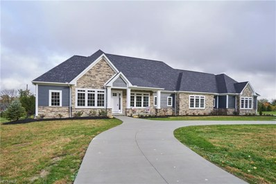4787 Autumn Leaves Dr, Akron, OH 44333 - MLS#: 4034612