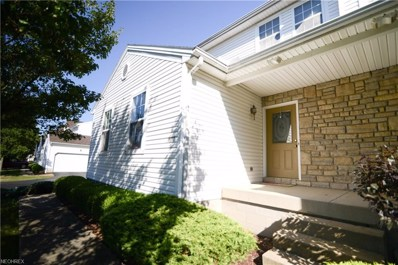 601 E Western Reserve Rd UNIT 1801, Poland, OH 44514 - MLS#: 4034783