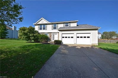 999 Pheasant Run Dr, Medina, OH 44256 - MLS#: 4034958