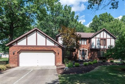 5009 Maple Leaf Ln, Independence, OH 44131 - MLS#: 4035209