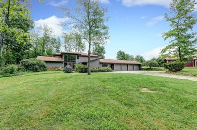 11423 County Line Rd, Chesterland, OH 44026 - MLS#: 4035452