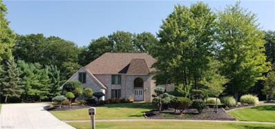 8787 Pointe Dr, Broadview Heights, OH 44147 - MLS#: 4035550
