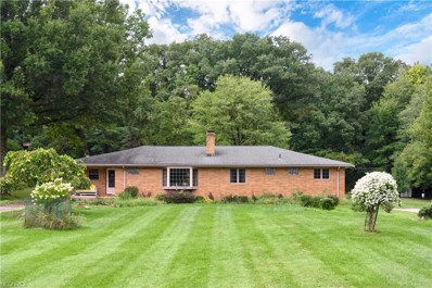 7464 Serio Dr, Independence, OH 44131 - MLS#: 4035638