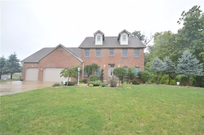 6935 Ruby Ct, Youngstown, OH 44515 - MLS#: 4035668