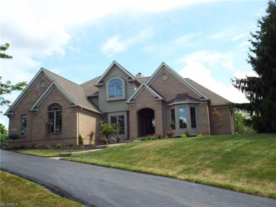 6481 Wooded View Dr, Hudson, OH 44236 - MLS#: 4035685