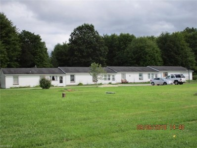 3784 New Hudson Road, Orwell, OH 44076 - #: 4035721