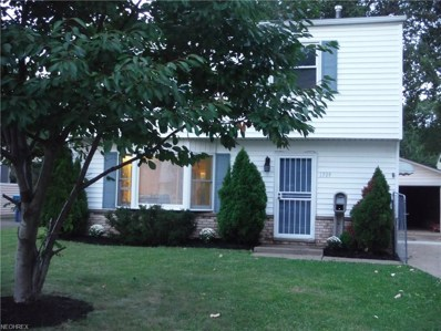 1509 Paine St, Lorain, OH 44052 - MLS#: 4035759