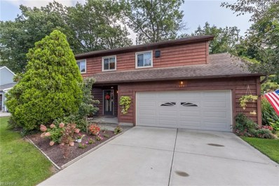 25401 Tyndall Falls Dr, Olmsted Falls, OH 44138 - MLS#: 4035880