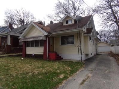153 E Lucius Avenue NE, Youngstown, OH 44507 - #: 4036145