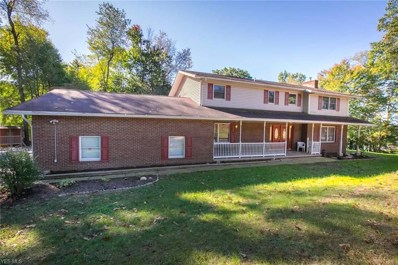 4565 S Main St, Akron, OH 44319 - MLS#: 4036154