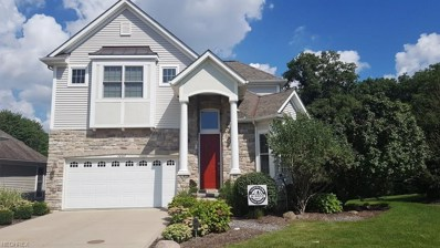 26827 Rue Saint Gabriel Ct, Warrensville Heights, OH 44128 - MLS#: 4036424