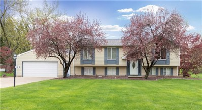 48 Skyline Drive, Canfield, OH 44406 - #: 4036448