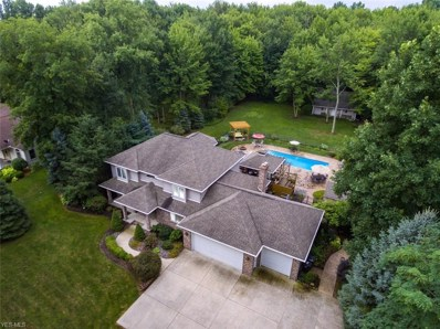 48261 Rice Rd, Amherst, OH 44001 - MLS#: 4036458