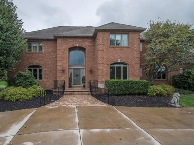48380 Bell School Road, East Liverpool, OH 43920 - #: 4036755