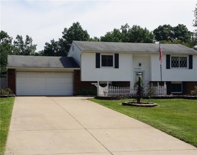 1951 Birch Trace Dr, Austintown, OH 44515 - MLS#: 4037019