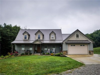 7689 State Route 516 NORTHWEST, Dundee, OH 44624 - MLS#: 4037419