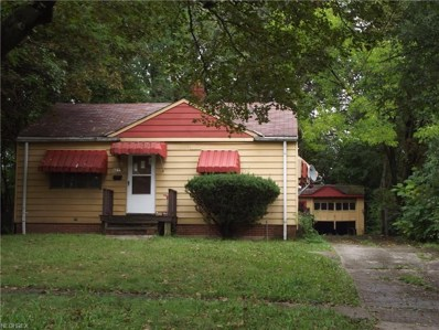 4249 E 163rd St, Cleveland, OH 44128 - MLS#: 4037452