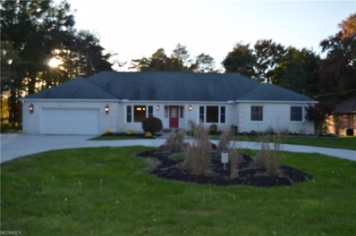 19646 Prospect Rd, Strongsville, OH 44149 - MLS#: 4037875