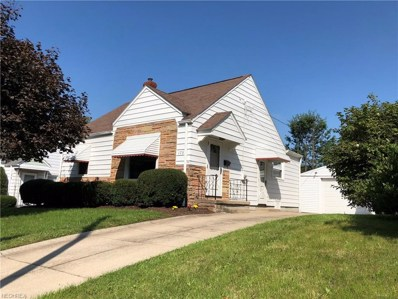 173 Palmetto Ave, Akron, OH 44301 - MLS#: 4038035