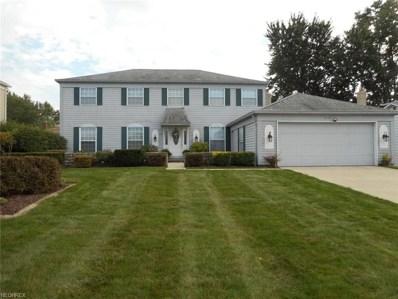 17123 Hawks Lookout Ln, Strongsville, OH 44136 - MLS#: 4038088
