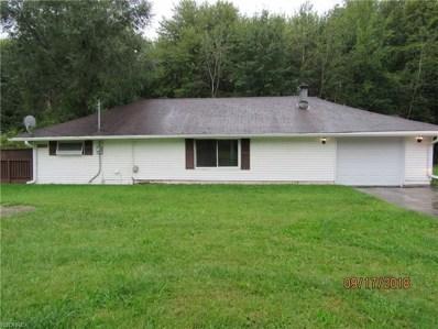 2314 Newton Tomlison Rd, Newton Falls, OH 44444 - MLS#: 4038091