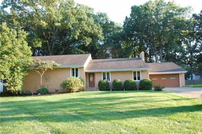 245 Moreland Dr, Canfield, OH 44406 - MLS#: 4038165