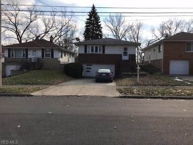 10808 Mountview Ave, Garfield Heights, OH 44125 - MLS#: 4038252