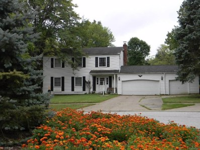 3409 Elmbrook Dr, Broadview Heights, OH 44147 - MLS#: 4038455