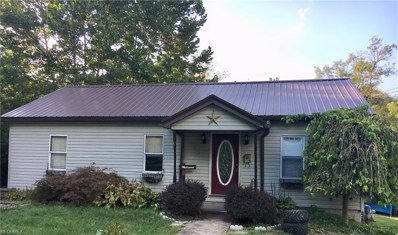 119 Emery Ave, Mingo Junction, OH 43938 - MLS#: 4038501