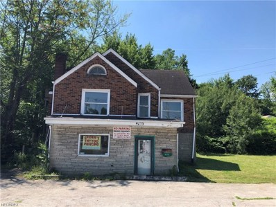 4215 Mahoning Avenue, Youngstown, OH 44515 - #: 4038536