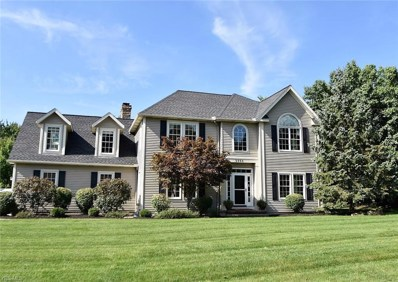 5934 Laurawood Ct, Hudson, OH 44236 - MLS#: 4038649