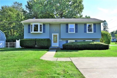 2399 Birch Trace Dr, Youngstown, OH 44515 - MLS#: 4038996
