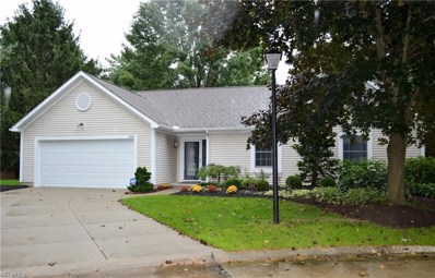 253 Lake Pointe Dr, Akron, OH 44333 - MLS#: 4039084