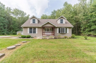434 Mapleview Ave, Sheffield Lake, OH 44054 - MLS#: 4039180