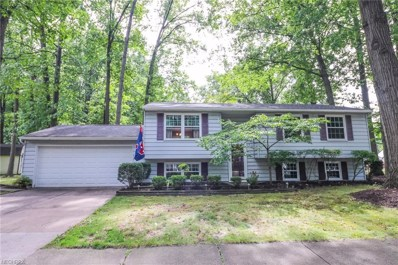 4374 Kenneth Rd, Stow, OH 44224 - MLS#: 4039202