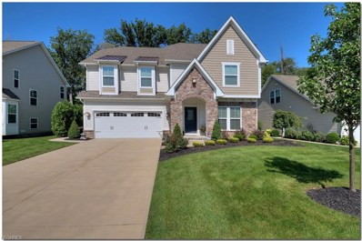 6531 Hidden Woods Trl, Mayfield Heights, OH 44143 - MLS#: 4039318