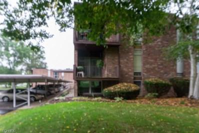 2960 N River Rd NORTHEAST UNIT D15, Warren, OH 44483 - MLS#: 4039351