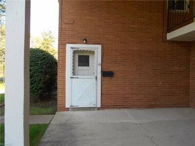 2470 Warren Pky UNIT 15, Twinsburg, OH 44087 - MLS#: 4039436