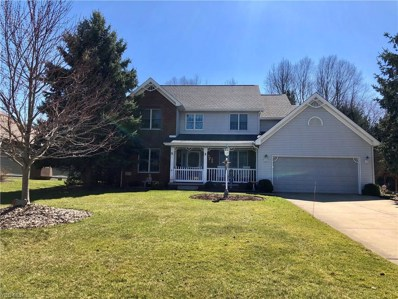 607 Chestnut Ln, Youngstown, OH 44512 - MLS#: 4039510