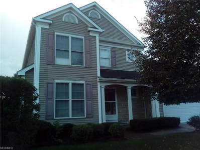 4894 Highland Place Ct, Richmond Heights, OH 44143 - MLS#: 4039617