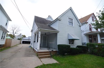 4119 Bucyrus Ave, Cleveland, OH 44109 - MLS#: 4039713