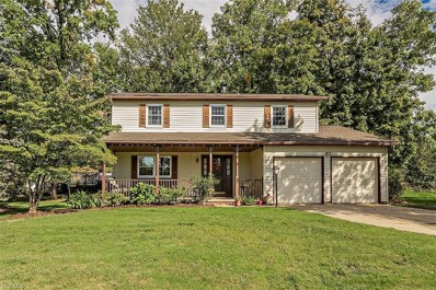 1139 Riverview Dr, Macedonia, OH 44056 - MLS#: 4039889
