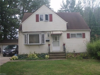 24230 Wildwood Ave, Euclid, OH 44123 - MLS#: 4040106