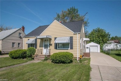 811 E 254th St, Euclid, OH 44132 - MLS#: 4040367