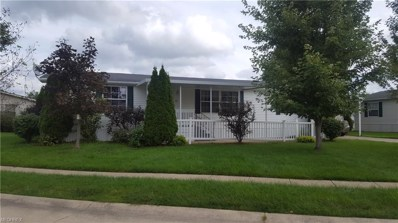 13 Fiddlesticks, Olmsted Township, OH 44138 - MLS#: 4040695