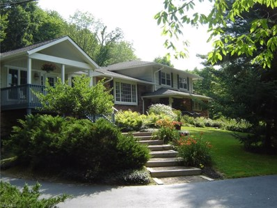 7540 Fields Road, Chagrin Falls, OH 44023 - #: 4040860